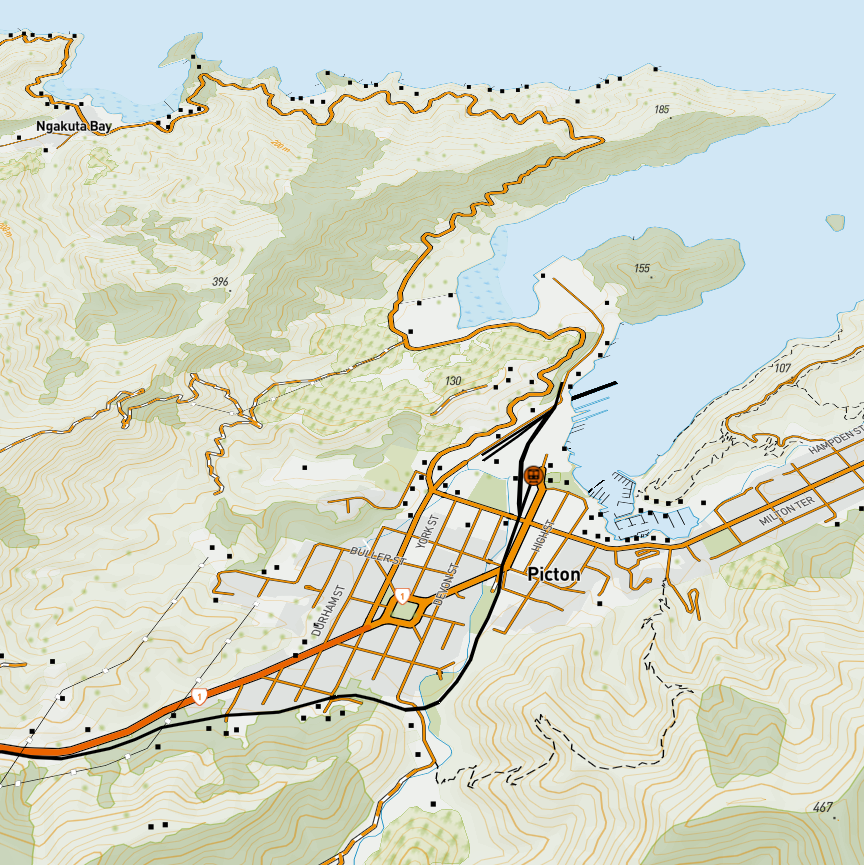 NZ Topo Web Map